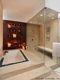 Bathroom Remodeling Tampa Fl 2016 Bathroom Remodeling Trends Design Home Remodel