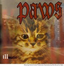 cat photo album hip hop albums the cat versions after run the jewels meow the