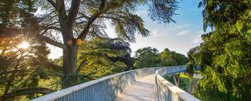westonbirt the national arboretum stihl treetop walkway your