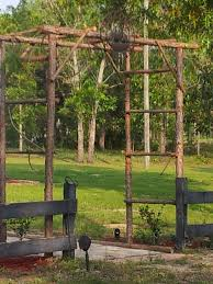 rustic arbor trellis made from pine saplings easy and cheap if