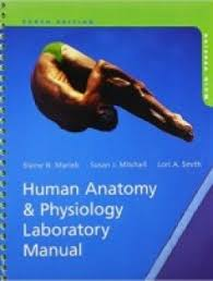 Saladin Anatomy And Physiology 6th Edition Online Human Anatomy U0026 Physiology Laboratory Manual Main Version 10th
