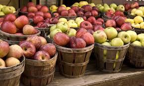 apples bioinformatics r u0026d