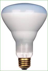 lighting 75 watt par30 wide flood long neck halogen light bulb