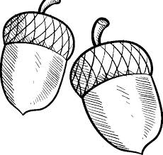 acorn leaves coloring pages coloring sky