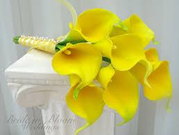 yellow calla yellow calla wedding bouquet in bloom