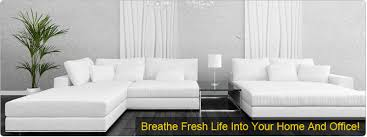 upholstery cleaning washington dc sofa cleaner dc