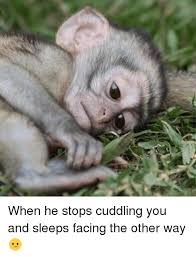 Cuddle Meme - all about cuddle memes mutually