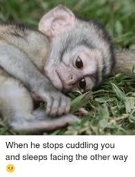 Cuddle Meme - all about cuddle memes