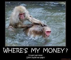 Funny Monkey Meme - wheres my money funny monkeys