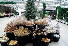 family tree garden center holiday season garden center u0026 nursery ideas commercial