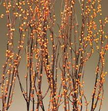 Berry Birch Branches Bittersweet Orange