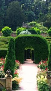 Elephant Topiary 325 Best Amazing Mazes Topiaries And Hedges Images On Pinterest