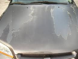 1998 honda accord clear coat is peeling from hood roof and or