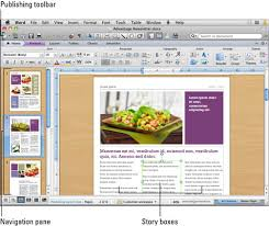 using the publishing layout view in word for mac 2011 dummies
