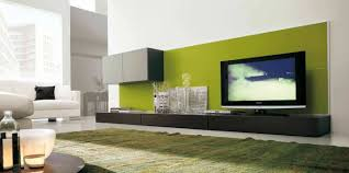 beautiful artistic living room with modular wall storage also long