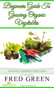 How To Grow Vegetables by Cheap Growing Vegetables For Beginners Find Growing Vegetables
