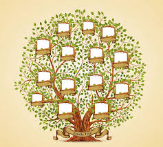 Family Tree Template Vintage Vector Stock Vector Illustration Of Family Tree Template