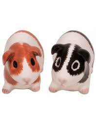 cute salt and pepper shakers guinea pig salt u0026 pepper shakers unique gifts shop colorful gifts