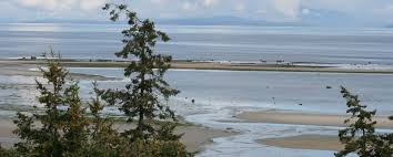 kye bay beach comox valley beaches