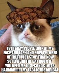 Tired Meme Face - grumpy cat meme imgflip