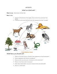 sample lesson plan in science vi with 5 e u0027s