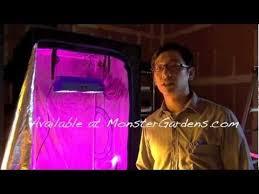 hid vs led grow lights u2013 performance comparison video weedist