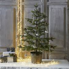 trees the white company uk