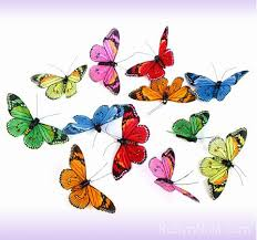 small rainbow butterfly garland inspirational butterfly gifts