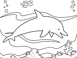 printable dolphin images dolphins pictures to print coloring pages of dolphin printable