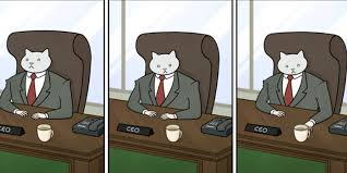 Buisness Cat Meme - all about the astounding career of business cat the daily dot