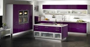 cuisine aubergine et gris couleur aubergine teinte très tendance et chic