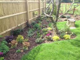 image of low maintenance landscaping ideas design free and decor