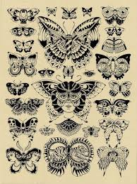 71 best butterfly tattoos images on butterflies