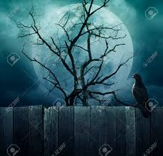 spooky halloween backgrounds bird stand on wood fence on spooky tree with moon background