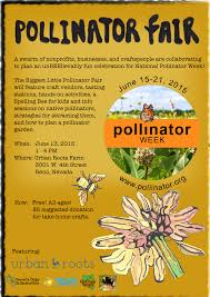nevada native plants outreach nevada bugs and butterflies