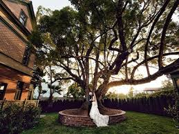socal wedding venues best affordable southern california wedding venues to fit your