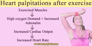 heart racing and light headed heart palpitations after exercise jpg