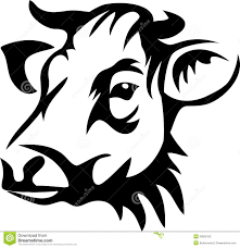 cow clipart cow head pencil and in color cow clipart cow head