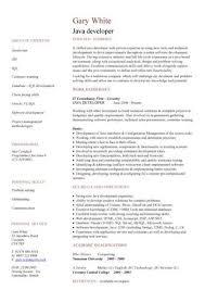 Java Developer Resume Sample by It Resume Free Resumes Tips
