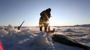 inuit culture in greenland youtube