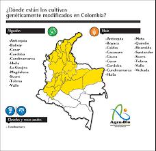 cual fue el aumento en colombia para los pensionados en el 2016 en 2011 la siembra de maíz transgénico se incrementó un 52