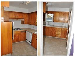 Diy Old Kitchen Cabinets Kitchen Cabinets Amazing Cheap Kitchen Renovations Small