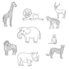 Coloriage animaux sauvages de savane et forêt