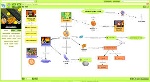 Blank Concept Map by Science Concept Map On Cell Structures Brainpop Educators