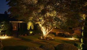 Landscape Up Lights Landscape Lighting Styles Trees Gardens Planters Sa Landscaping
