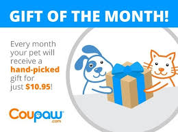 gift of the month coupaw gift of the month program exclusive coupaw