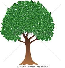 green tree illustration of green tree on white background vector