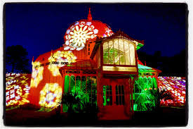 summer jam lights up conservatory of flowers with 60s spirit