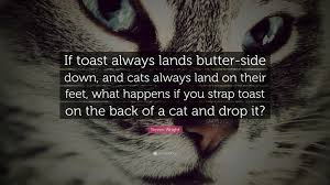Love Happens Quotes by Funny Quotes 26 Wallpapers Quotefancy