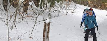 sleigh rides skating snowshoe tours king pine